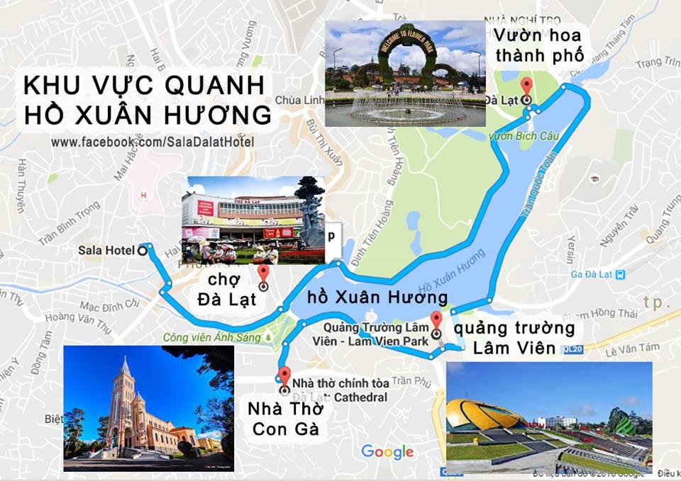 Đường đến vườn hoa thành phố Đà Lạt