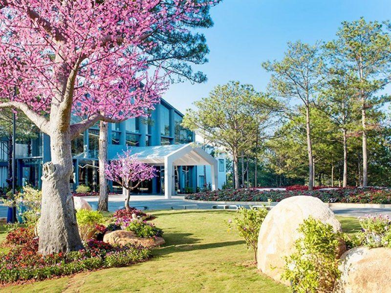 Top khách sạn đẹp Đà Lạt