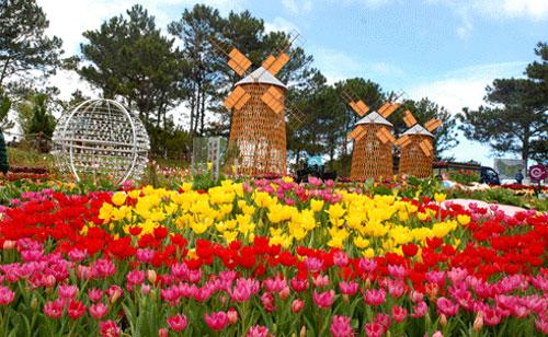 Kết quả hình ảnh cho Vườn Hoa Đà Lạt