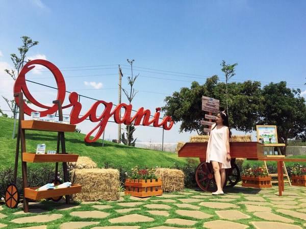 Địa chỉ trang trại bò sữa organic