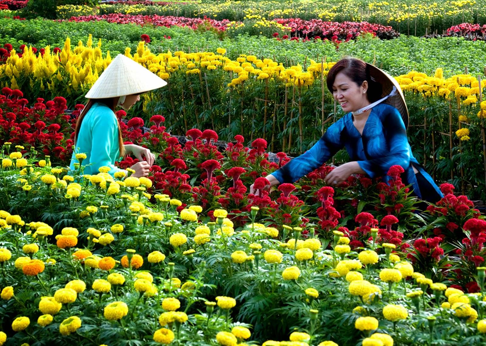 du lịch văn hóa Đà Lạt