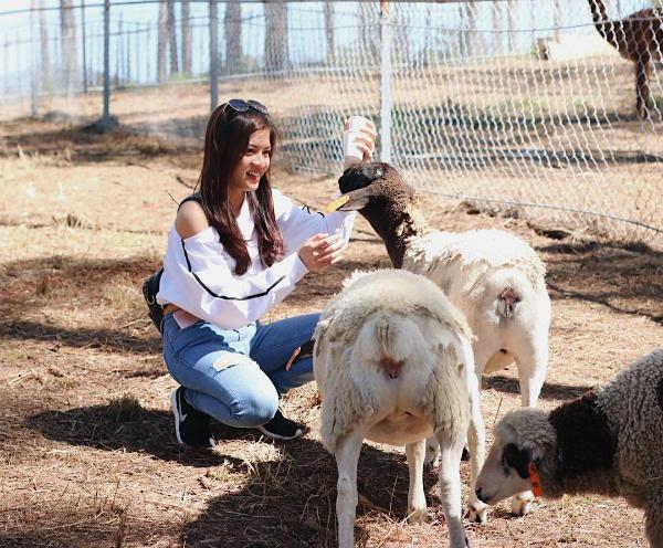 Giá vé sở thú ZooDoo Đà Lạt