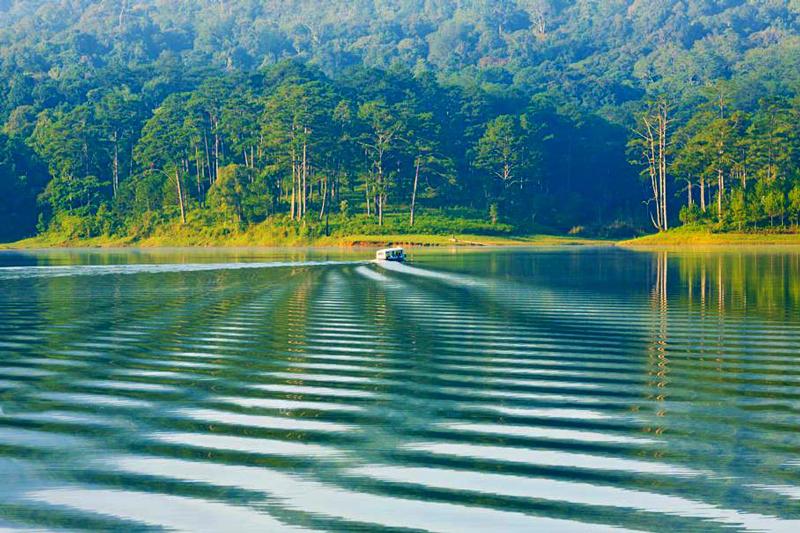 Hồ Tuyền Lâm có gì chơi