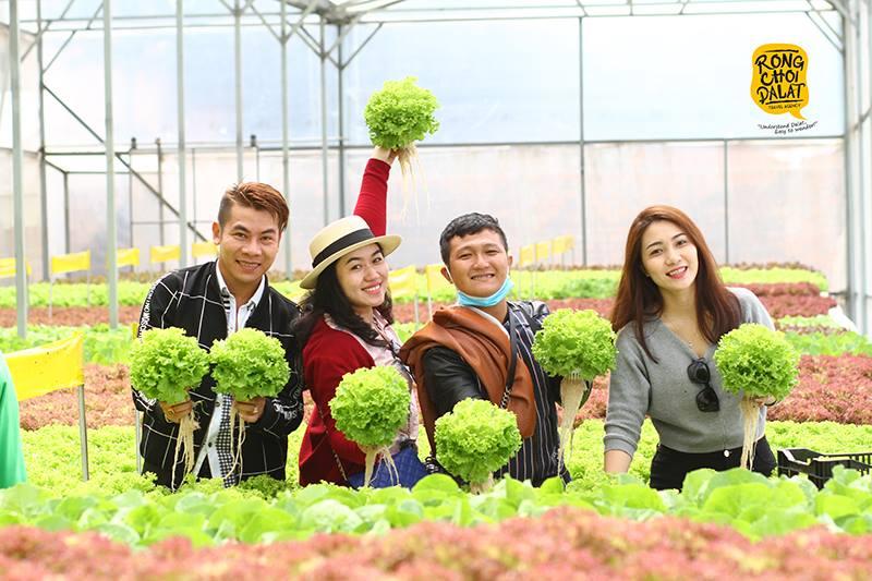 Tour du lịch nhà vườn Đà Lạt