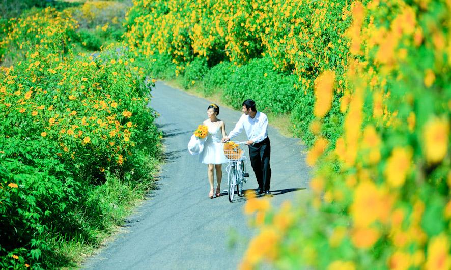 Đà Lạt tháng 10 có hoa dã quỳ