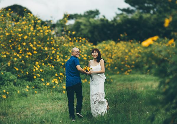 Hình ảnh hoa dã quỳ Đà Lạt