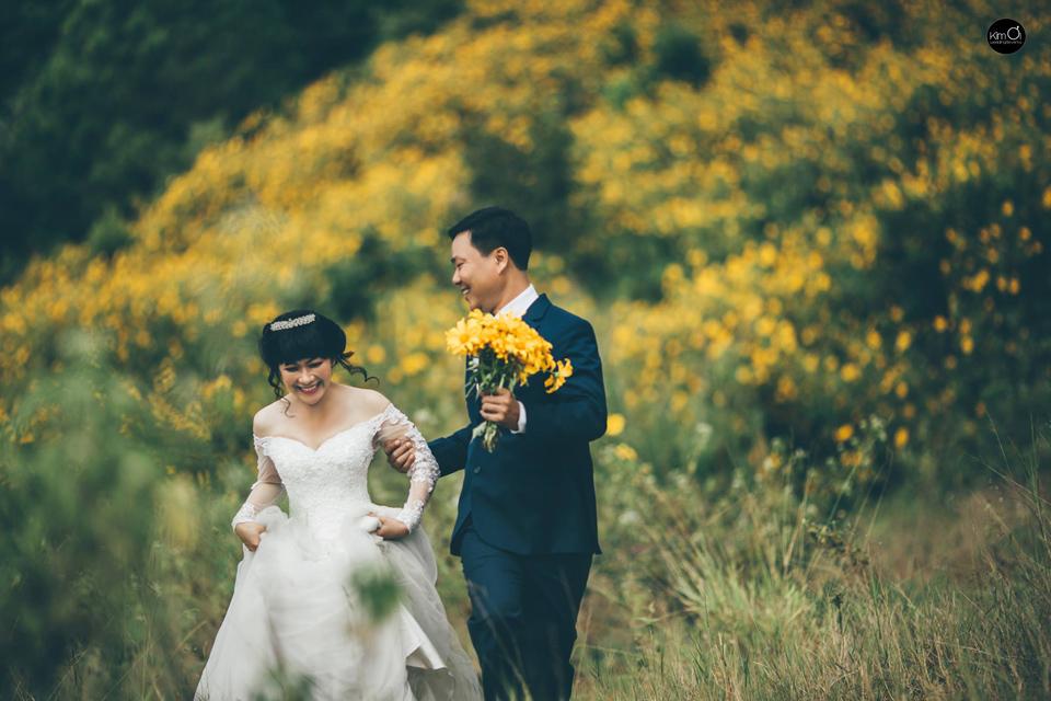 Review hoa dã quỳ Đà Lạt