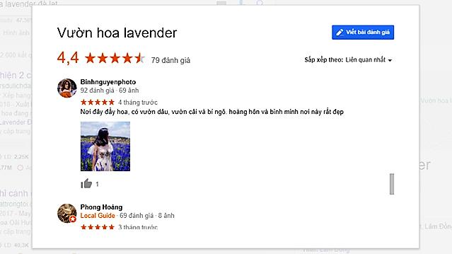 Cánh đồng hoa Lavender Đà Lạt review