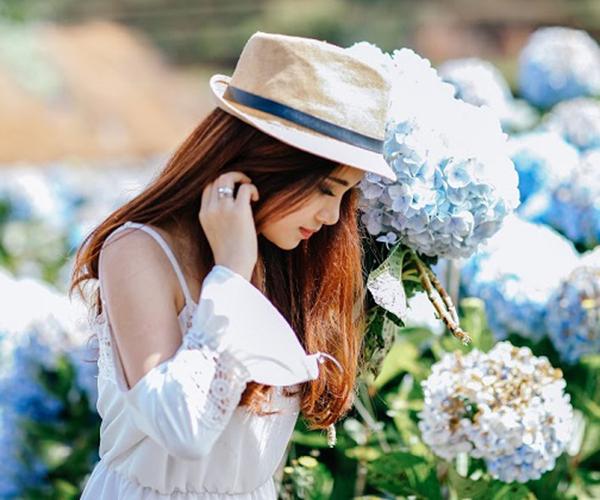 check in vườn hoa Cẩm Tú Cầu
