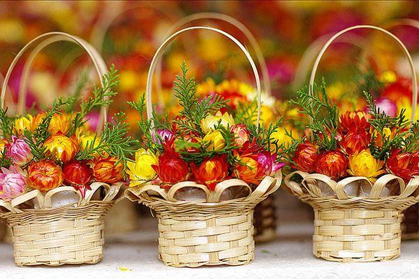 Công ty Rừng hoa Đà Lạt
