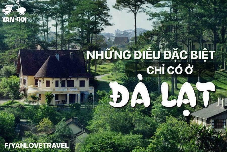 Khách sạn, resort, homestay, nhà nghỉ Đà Lạt