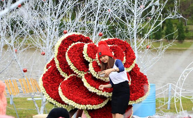 Làng hoa vạn thành ở Đà Lạt