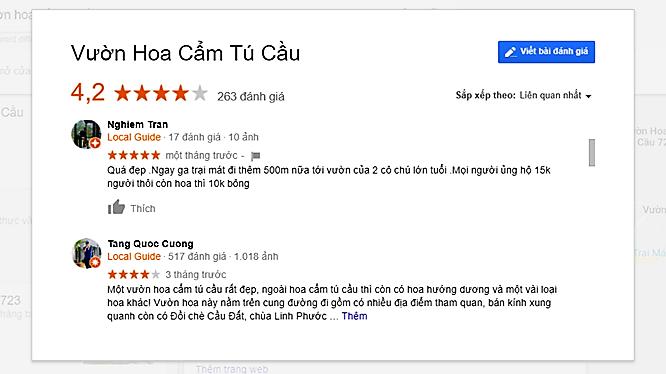 review Vườn hoa cẩm tú cầu Đà Lạt