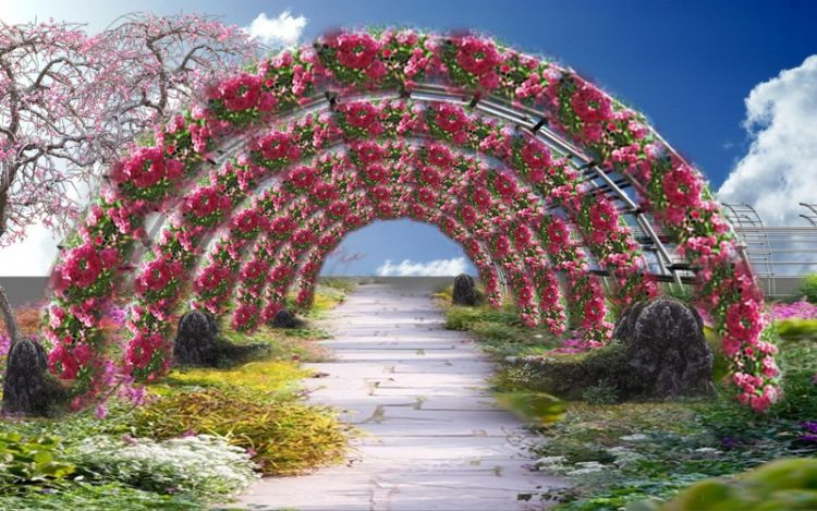 Con đường hoa fresh Đà Lạt
