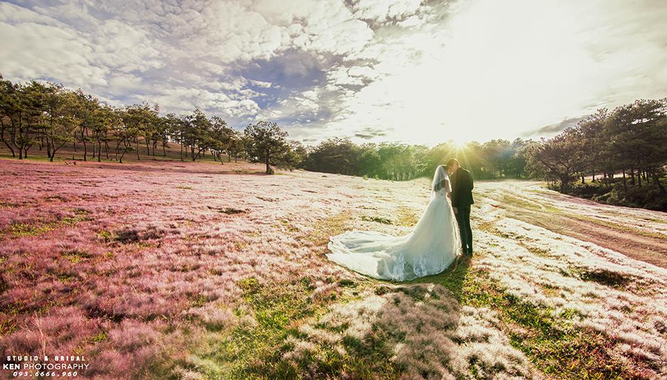 Chụp ảnh cưới ở đồi cỏ hồng