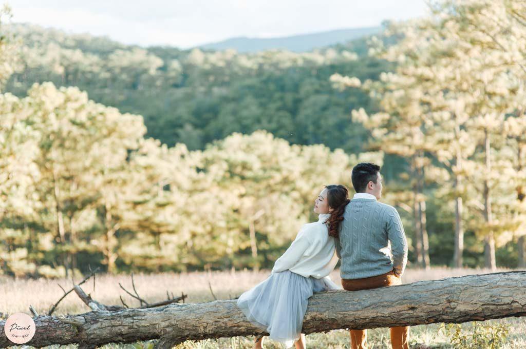 Đồi thông chụp ảnh cưới Đà Lạt