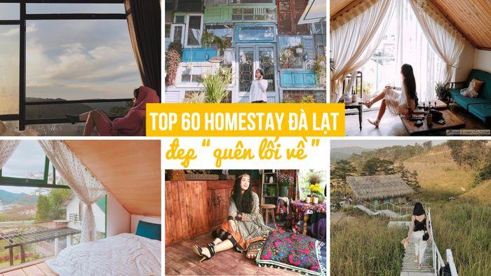 top hostel homestay Đà Lạt