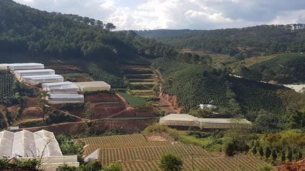 Cần bán lô đất thuộc khu vực Măng Lin Đà Lạt diện tích 500m²