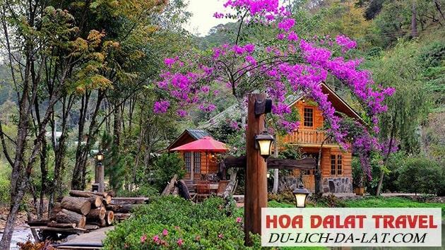 Khách sạn Ma Rừng Lữ Quán
