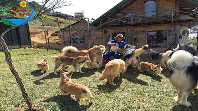 vườn thú cưng ở trại mát Đà Lạt