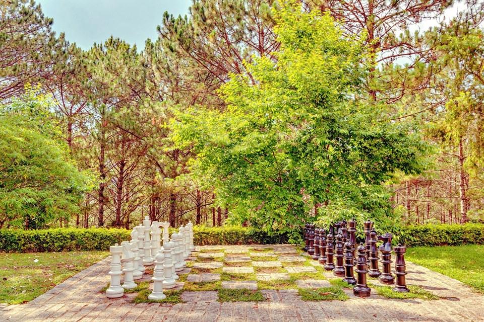 Khuôn viên dinh 1 Đà Lạt
