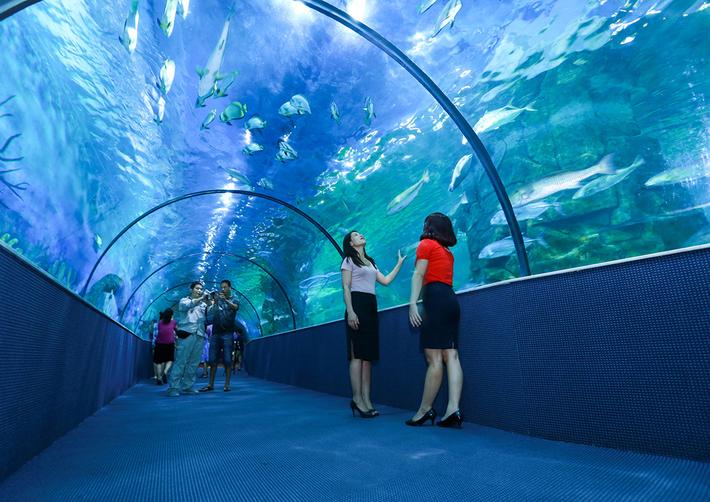 Viện hải dương học