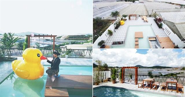 homestay Đà lạt có hồ bơi