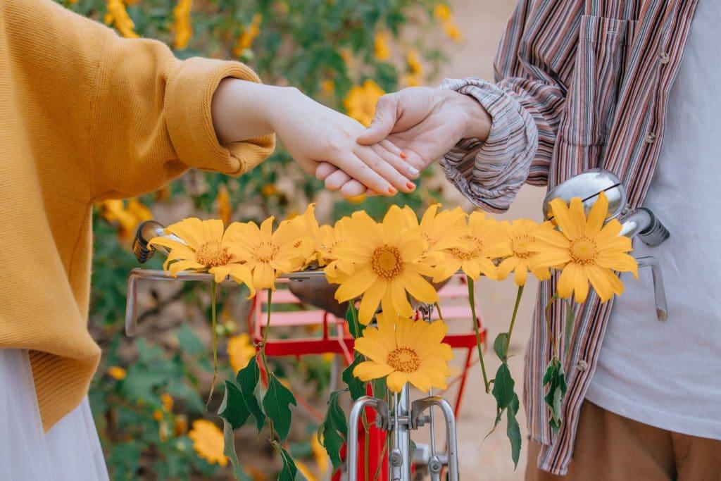 Đà Lạt có hoa dã quỳ chưa