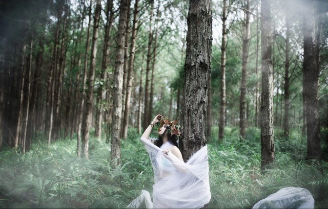 check in rừng thông đà lạt