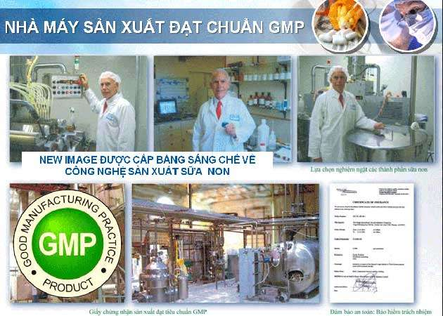 Sữa non đạt chuẩn GMP