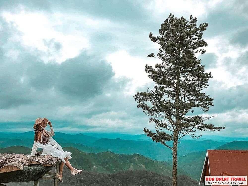 Các tour săn mây Đà Lạt