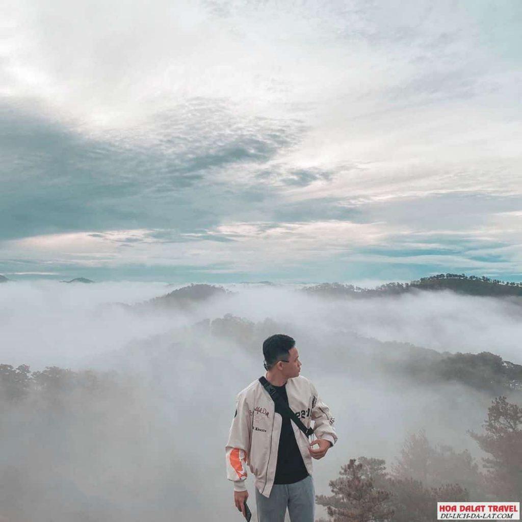 Kinh nghiệm đi tour săn mây Đà Lạt