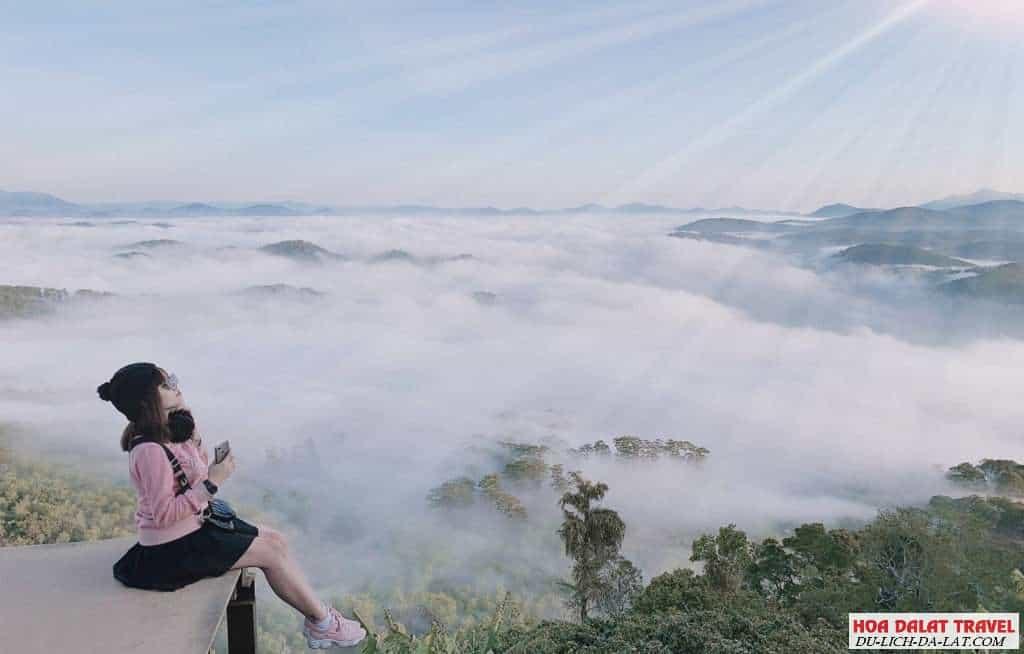 săn mây đà lạt 1 ngày