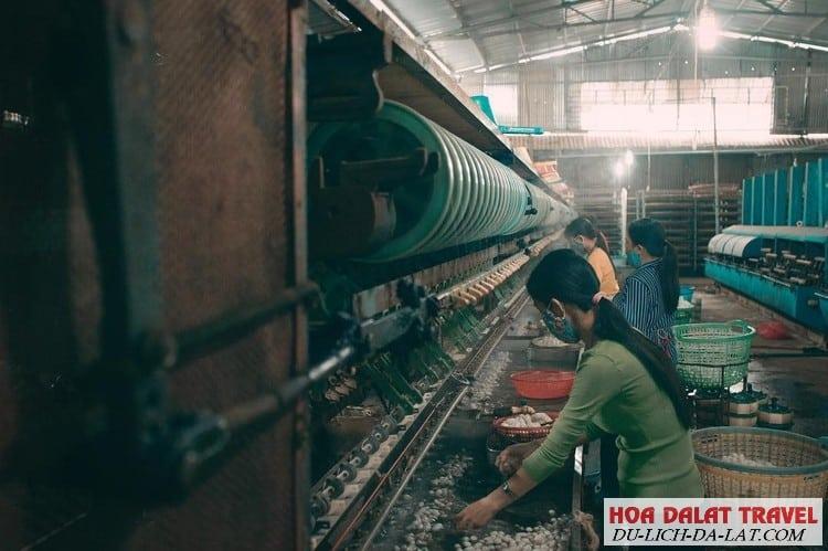 Làng nghề dệt lụa tơ tằm Đà Lạt