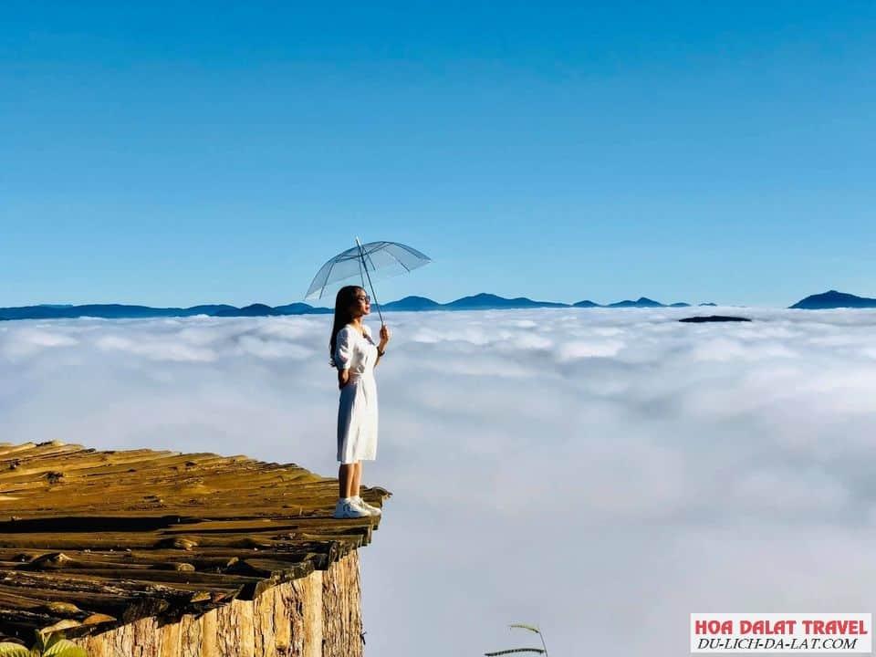 Thảm gỗ săn mây