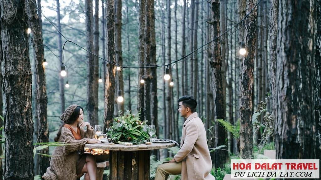 Nhà hàng rừng thông mơ Farm & Bistro