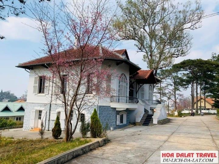 Biệt thự Hùng Vương- view