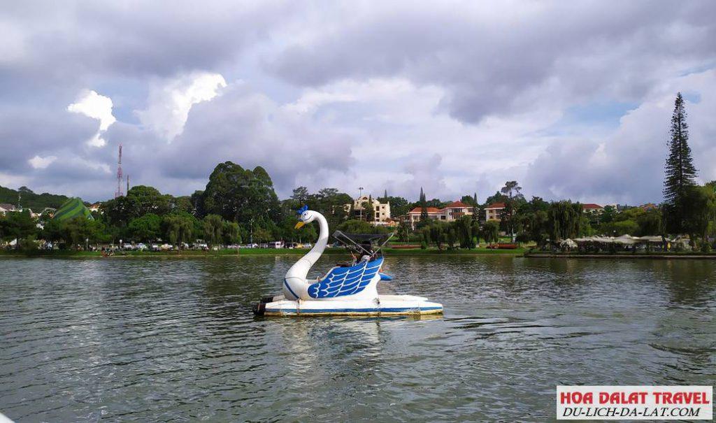 Đạp vịt trên hồ Xuân Hương
