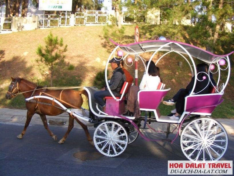 Đi xe ngựa quanh hồ Xuân Hương ngắm nhìn thành phố Đà Lạt