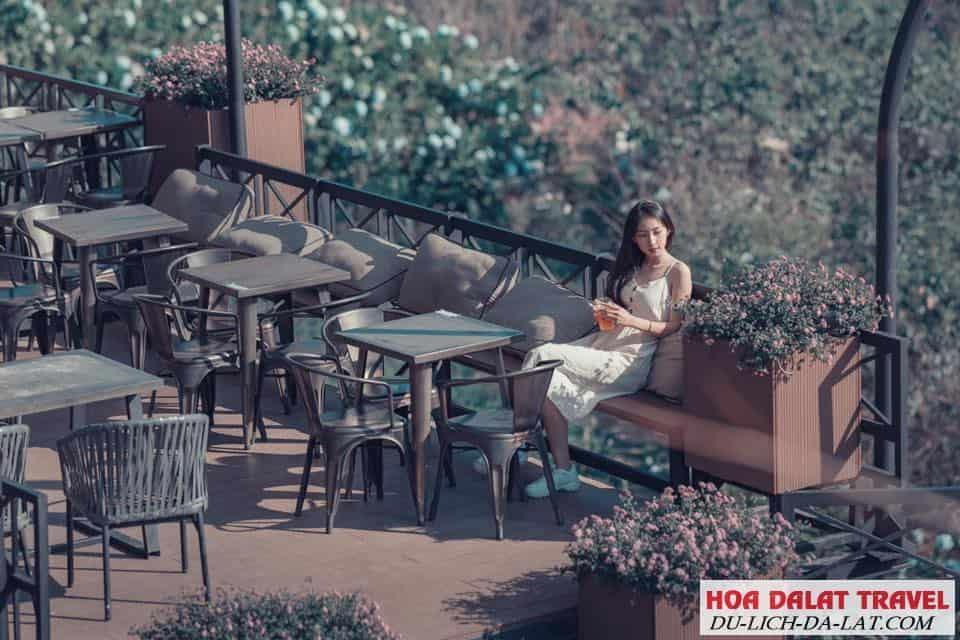 Đôi nét về Cafe F cánh đồng hoa - Khung cảnh