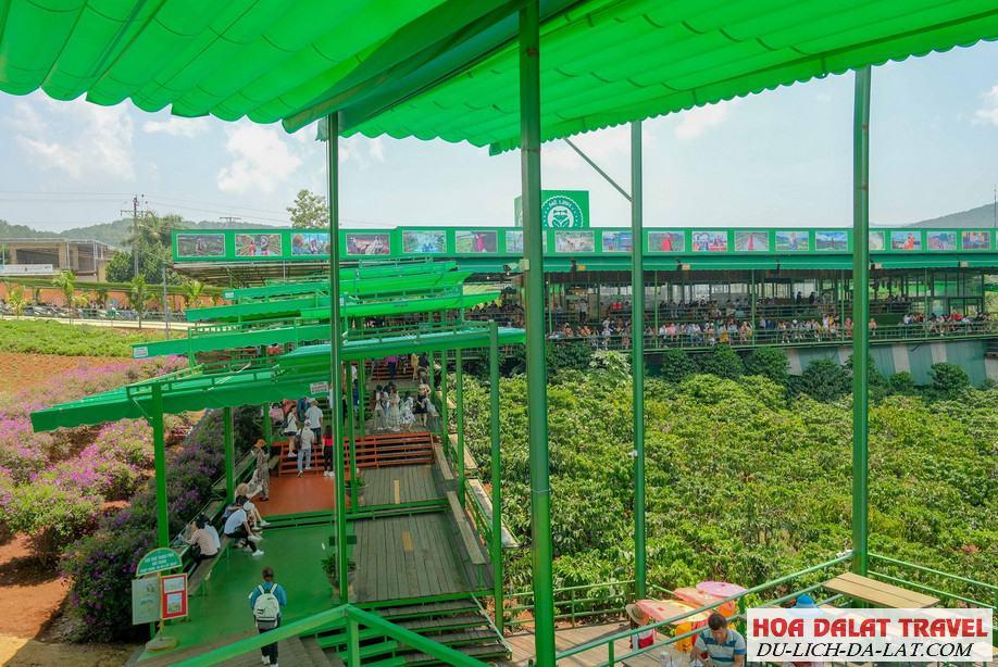 Giới thiệu về quán Cafe Mê Linh