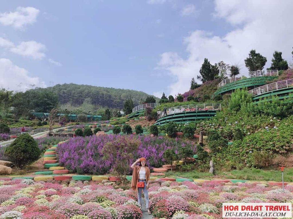 Hình ảnh F cánh đồng hoa