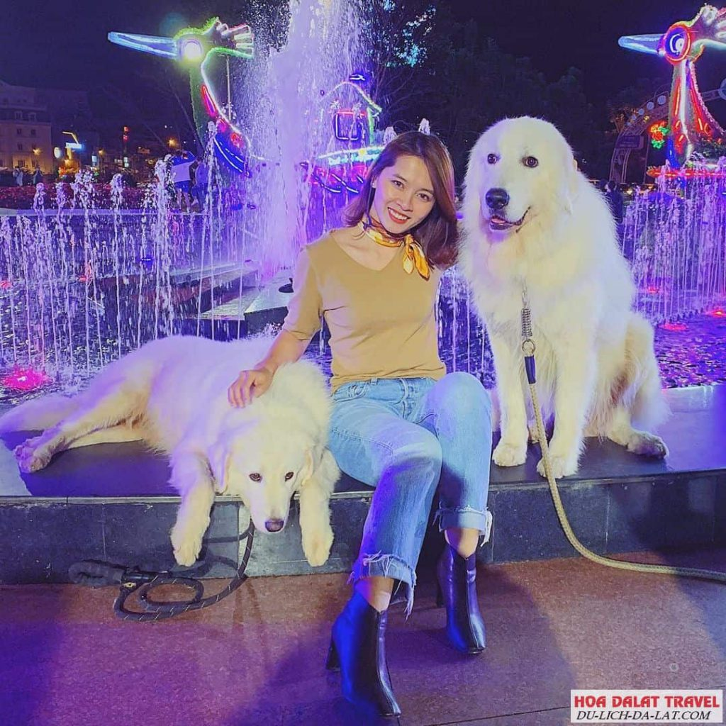 Hình ảnh du khách check in tại chợ đêm Đà Lạt