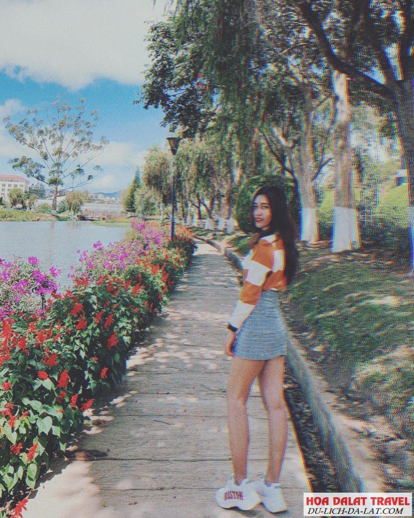 Hình ảnh vườn hoa thành phố - du khách checkin