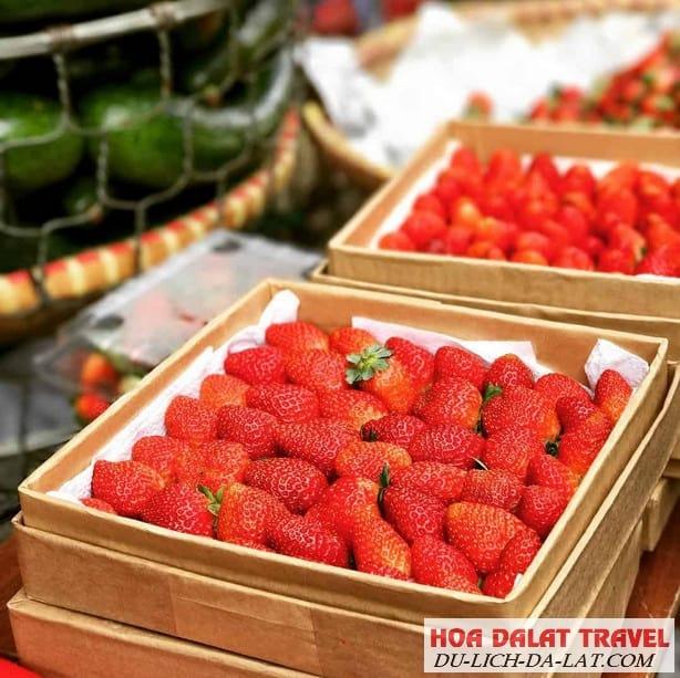 Nông sản và hoa quả tươi