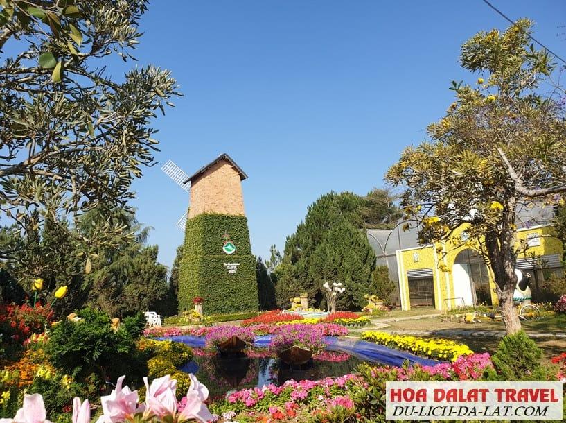 Vườn hoa thành phố Đà Lạt có gì