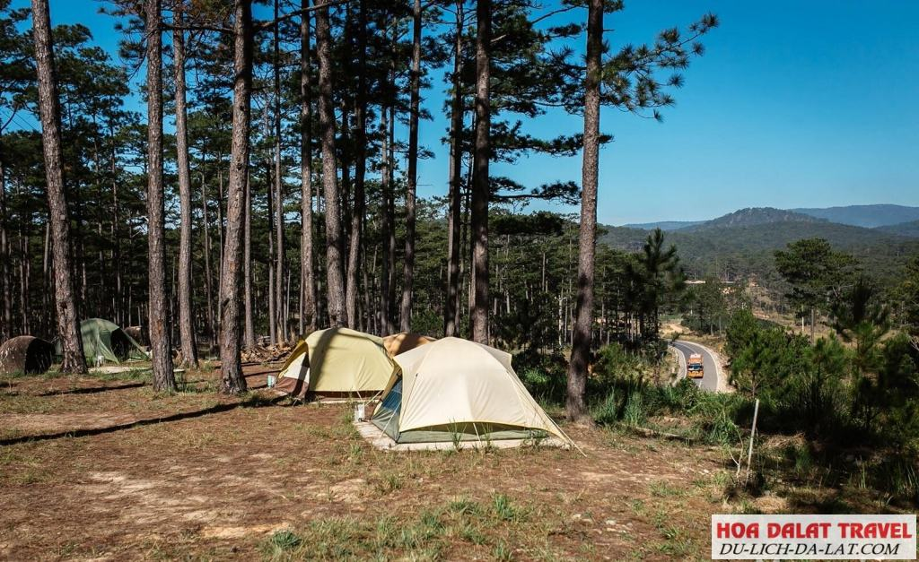 Cắm trại ở Zoodoo