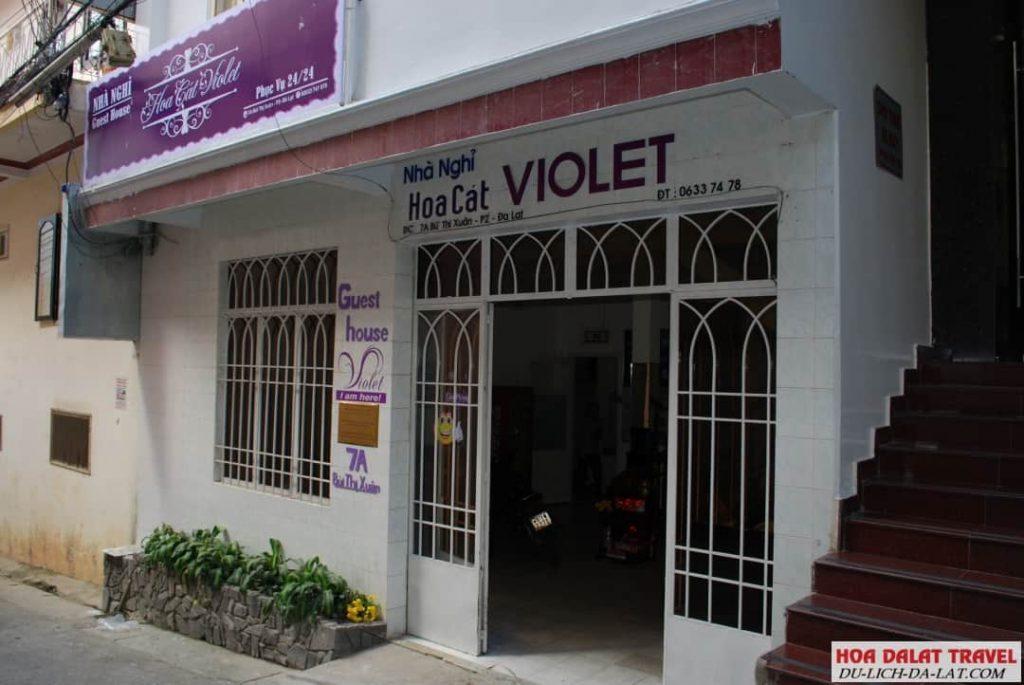 Khách sạn Hoa Cát Violet