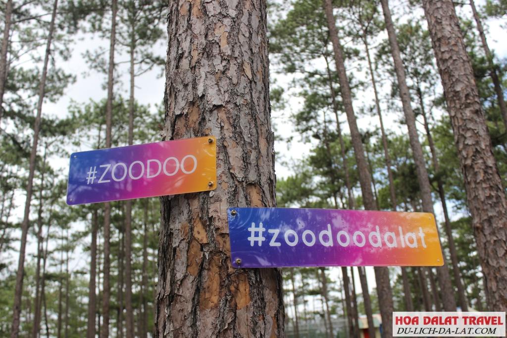 Sở thú Zoodoo ở đâu