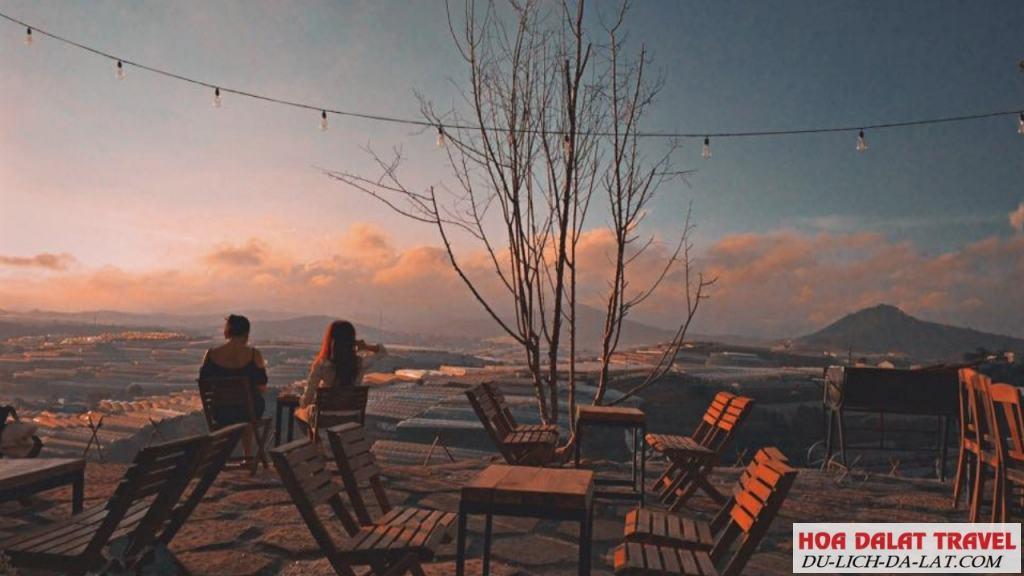 Top những quán cafe có view đẹp ngất ngay tại Đà Lạt